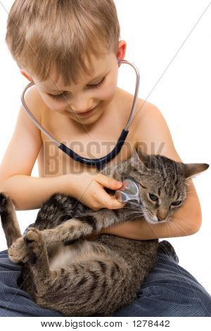Boy Playing With Cat And Steth