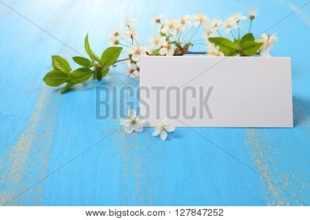 Flowers Of Cherry  And Card