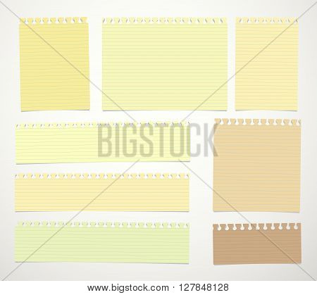 Pieces of cut yellow, brown lined notebook paper sheets are stuck on white background.