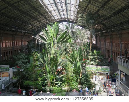 Madrid Spain April 7 2016: Tropical green house location in Atocha train station Madrid Spain. Madrid Spain April 7 2016