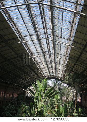 Madrid, Spain April 7 2016: Tropical green house location in Atocha train station. Madrid, Spain April 7 2016