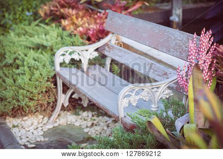 old vintage bench in beautiful flowers garden