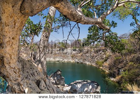 Otjikoto Lake the smaller of only two permanent natural lakes in Namibia Africa.
