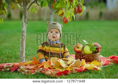 photo of little cute boy with the harvest