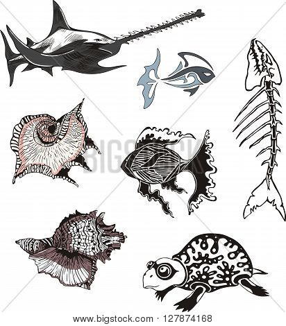 Set of underwater sea wildlife. Vector illustrations.