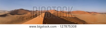 Sand Dune 45 in Sossusvlei Namibia. Desert landscape. Take a walk into the sand dunes. Panorama of the African sand dunes.
