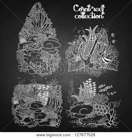 Coral reef design collection in line art style.  Sea and ocean plants and rocks isolated on chalkboard