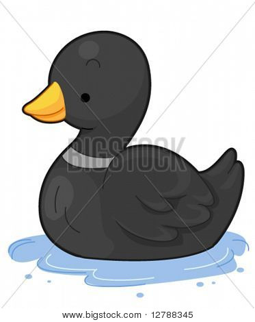 A Cute Duck Floating on Water - Vector