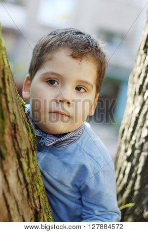 Little handsome boy in blue stands among tree trunks at sunny day
