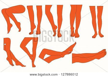 Set of female legs. Different variants of silhouette elegant female legs.