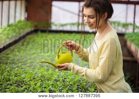 Young Farmer Woman Watering Green Seedlings In Greenhouse