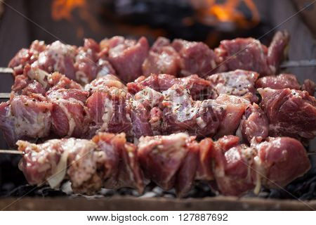 Southern Roasted Meat Cooking