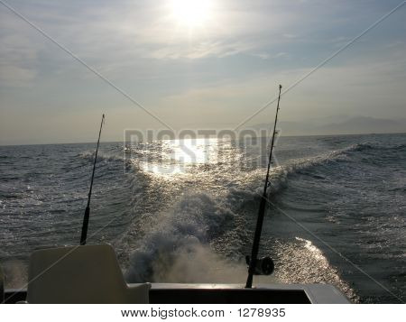 Who Is Fishing