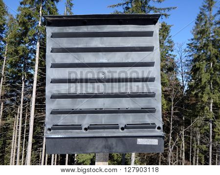 Black pheromone traps insects in the spruce forest