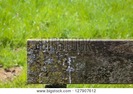 Wooden Bench Plank Covered In Lichen And Moss