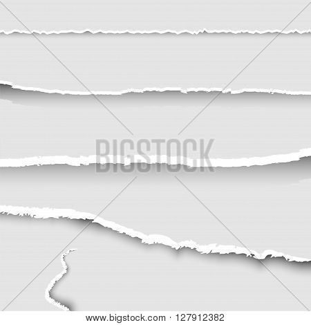 Set of torn paper, collection of pieces of torn paper with ripped edges and shadows, torn paper banners set, background, vector