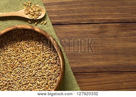 Toasted oat grains a healthy crunchy breakfast cereal ingredient in wooden bowl photographed overhead on dark wood with natural light (Selective Focus Focus on the top of the grains in the bowl)