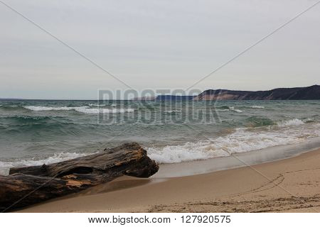 A piece of drift wood sits on Lake Michgan beach with dunes in the background.  Sleeping Bear Dunes National Lakeshore, Michigan