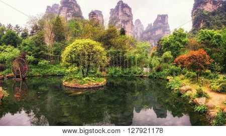 Small Pond With Reflection In Yangjiajie