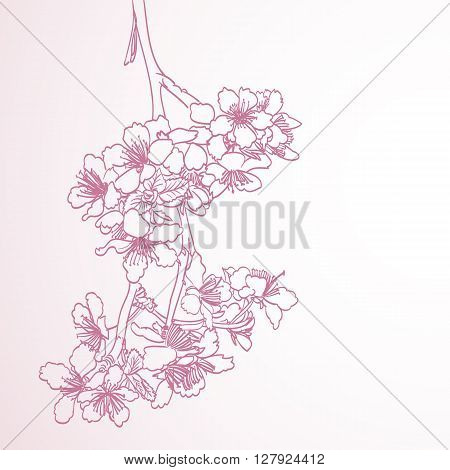 blossoming tree line art hand drawing illustration. spring stylish horizontal background with pink plum flowers vector