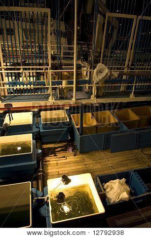 Photographie de nuit du matériel d'un bateau de pêche industriel