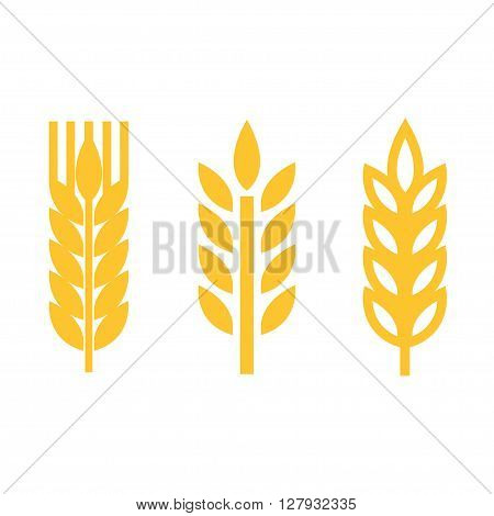 Vector yellow wheat ear spica icons set on white background