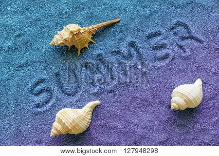 summer written on sand with three shells