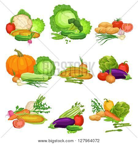 Collection Of Flat Fresh Vegetables, Still Life Illustrations Of Vegetables, Healthy Lifestyle And Vegetarian Food Concept