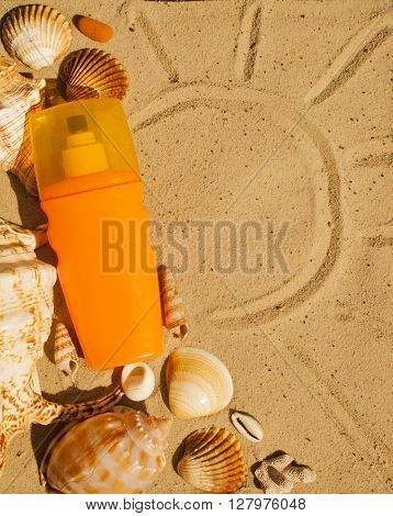 Tanner on the sandy beach with seashells. Summer time background.