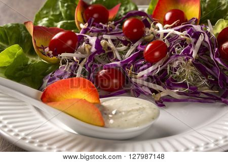 Salad Dish With Grape Tomatoes, Lettuce And Red Cabbage And Sauce. Coleslaw