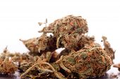 Close Up Dried Marijuana Leaves On The Table poster