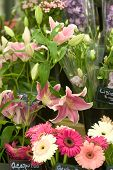 foto of flower shop  - Flower stand - JPG