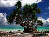 Beach In Fanning Island, Pacific Ocean.