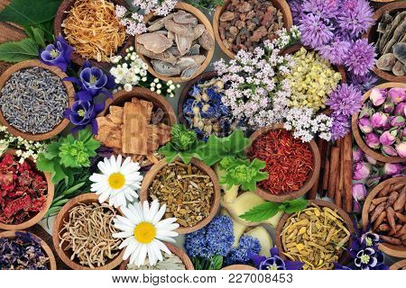Herbal medicine with herbs and