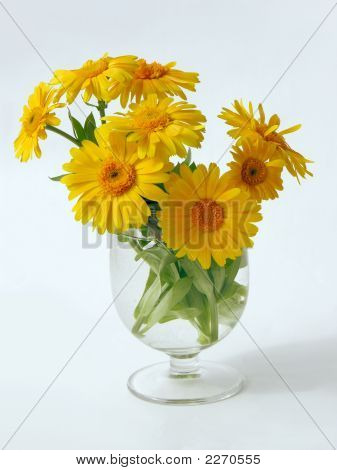 Posy Of Some Marigold Flowers In Glass