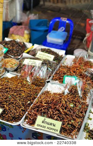 Fried Insects As Snack