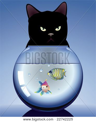 Black Cat And Aquarium With Fishes