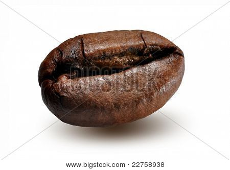 Isolated macro shot of coffee beans