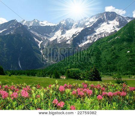 Adamello National Park - Italian Alps