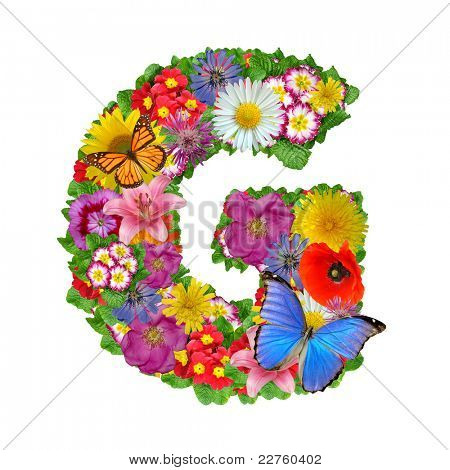 alphabet of flowers and butterfly