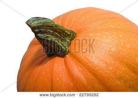Orange Pumpkin Background