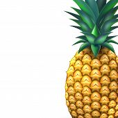 Pineapple Closeup Realistic Fruit. Vector Illustration. 3d Ripe Tropical Exotic Juicy Fresh Food, Vi poster