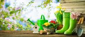 Gardening tools and spring flowers on the terrace in the garden poster
