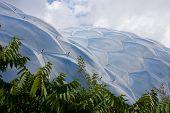 Eden Project Biome, Cornwall