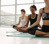 Women Meditating In Fitness Studio poster