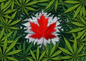 Canadian Marijuana Concept And Canada Cannabis Law And Legislation Social Issue As Medical And Recre poster