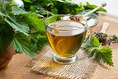 A Cup Of Nettle Tea With Fresh And Dried Stinging Nettles In The Background poster