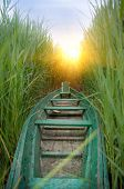 foto of boggy  - wooden boat in a cane - JPG