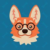 Corgi Dog Emotional Head With Glasses. Vector Illustration Of Cute Dog In Flat Style Shows Nerd Emot poster