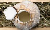 Coconut With Coco Milk In The Hay Background poster
